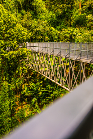 Canopy walkway in Chiangmai city, Thailand. Standard-Bild