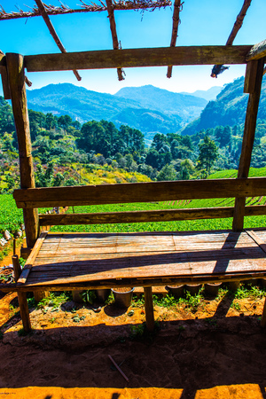 Rest house with strawberry plantation field at Doi Ang Khang, Thailand.