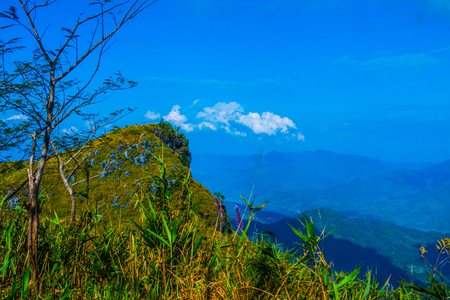Top View at Doi Pha Tang in Chiangrai Province, Thailand. Stock Photo