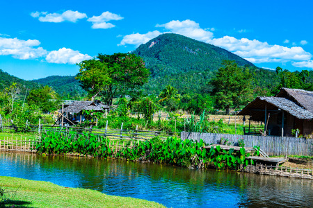 Small canal with mountain in Mueang Khong district, Thailand. Archivio Fotografico - 115535845