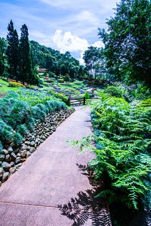 Mae Fah Luang Garden in Chiang Rai Province, Thailand.