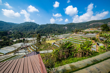 The mountain view of Doi Inthanon national park in Chiangmai province, Thailand. Редакционное