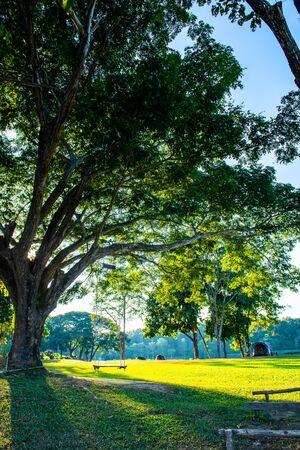 Patio de acampada en el Parque Nacional Mae Puem, provincia de Phayao. Foto de archivo
