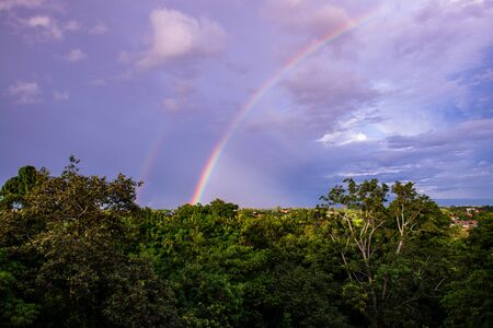 Rainbow with tree foreground at Chiangmai province, Thailand. Archivio Fotografico