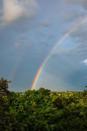 Rainbow with tree foreground at Chiangmai province, Thailand.