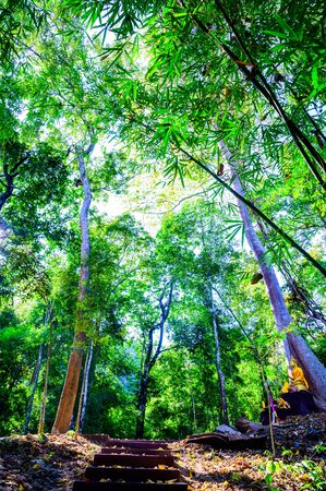 Landscape of Tham Phatai National Park, Lampang province.