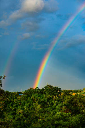 Rainbow with tree foreground at Chiangmai province, Thailand. 免版税图像