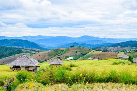 Pa Bong Piang Rice Terraces at Chiang Mai Province, Thailand.