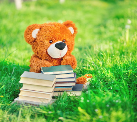 toy bear sits with a books in the green grass