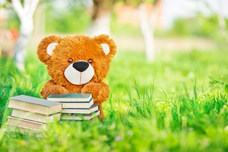 toy bear sits with a books in garden