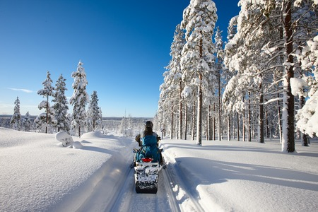 Sunny winter landscape with a man traveling Finnish Lapland with snowmobile