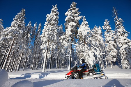Man driving snowmobile in snowy forest in a sunny day. Lapland, Finland.