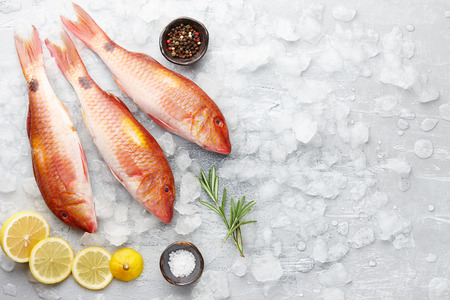 mullet: Red mullet fish cooking Stock Photo