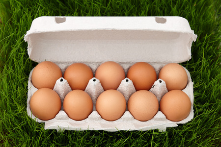 Natural brown eggs box in green grass