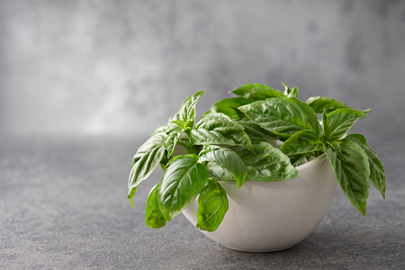 mediterranian: Fresh basil leaves in bowl