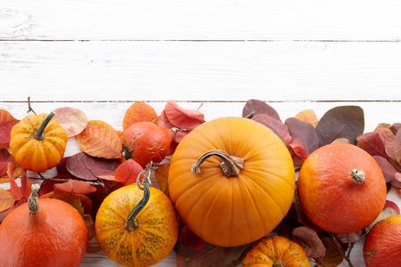 カラフルな秋カボチャと葉、秋シーズン コンセプトの背景 写真素材