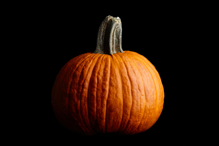 Big orange pumpkin on black background, Halloween celebration Stock Photo