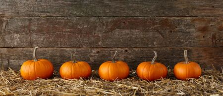 Orange halloween pumpkins on stack of hay or straw in a row, fall display