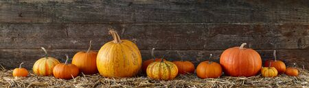 Various pumpkins on stack of hay or straw in a row, fall display