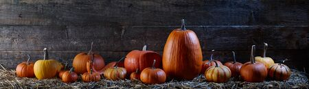 Halloween pumpkins on stack of hay on old barn planks background in the moonlight, holiday decoration