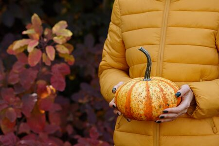 Woman holding orange pumpkin on colorful fall leaves background