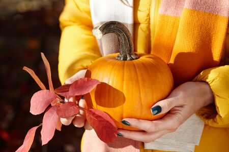 Woman holding orange pumpkin on colorful fall leaves background, close up view