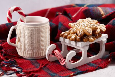 Christmas hot chocolate with candy cane and gingerbread cookies on wool plaid blanket, holiday concept