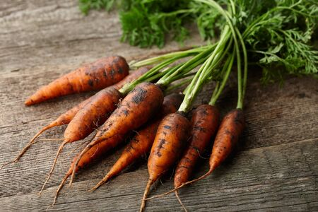 Fresh unwashed carrots with greens on old wooden planks Stock Photo