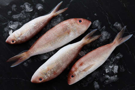 Fresh red mullet fish on black stone background, top view