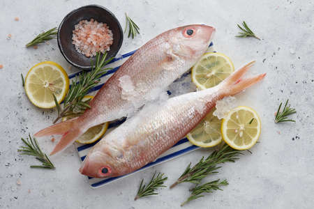 Raw red mullet fish with lemons and herbs on white stone background, copy space Standard-Bild