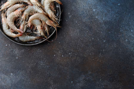 Fresh tiger prawns in plate with ice on textured metal background, copy space