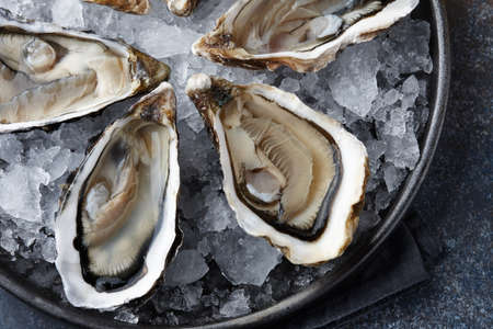 Fresh opened oysters on ice, close up view Standard-Bild
