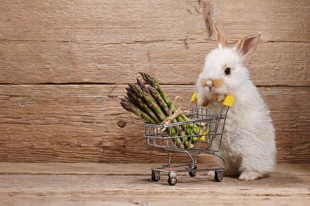 Cute bunny rabbit with asparagus shopping basket, healthy food concept Standard-Bild