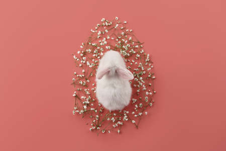 Egg shaped spring flowers and white bunny rabbit on pink background. Easter concept.