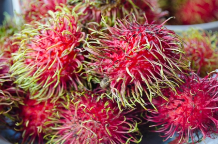 initiator: The Fresh Rambutan Thai Fruit Yummy Stock Photo