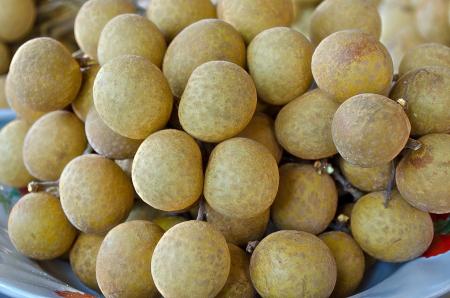 initiator: The Fresh Sweet Longan Thai Fruit Yummy