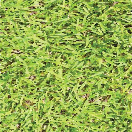 grass field: The Field grass