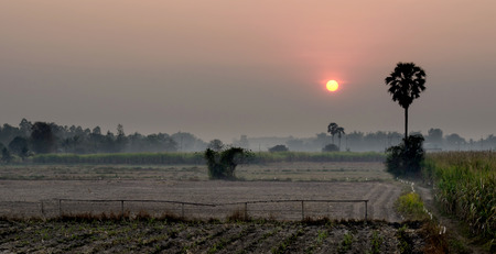 The Landscape of Sunset in Country.
