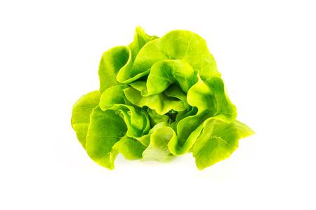 ensalada verde: Ensalada de verduras en el fondo blanco Foto de archivo