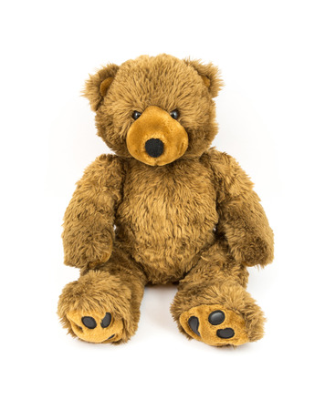 brown bear: Brown teddy bear on the white background
