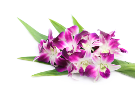 Fresh orchid flowers decorated with pandan leaves offering  to Buddha. Stok Fotoğraf