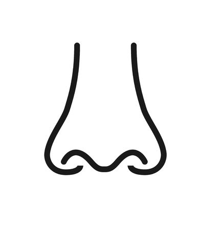Outline icon  human senses: smell (nose). Vector symbol isolated on background .