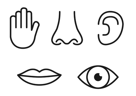 Outline icon set of five human senses: vision (eye), smell (nose), hearing (ear), touch (hand), taste (mouth with tongue). 向量圖像