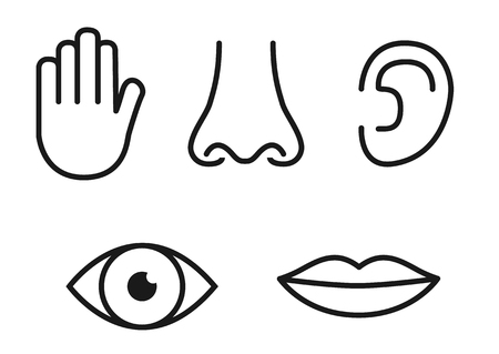 Outline icon set of five human senses: vision (eye), smell (nose), hearing (ear), touch (hand), taste (mouth with tongue).