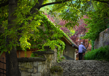 Scenery with ivy-covered house, tree and man Stock Photo