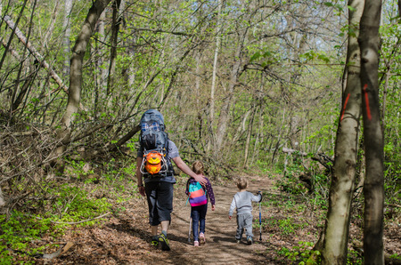 Family walk or hike through the forest in early spring Reklamní fotografie