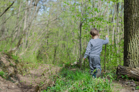 Boy walk or hike through the forest in early spring