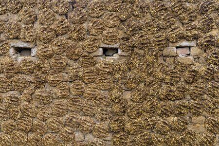 Le mur de la maison est fait de bouse en Inde.