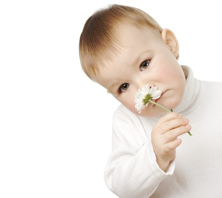Cute child smelling daisy, isolated over white Stock Photo - 4289584