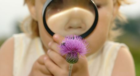 Cute child looking at flower through magnifying glass, focus on flower, shallow DOF photo